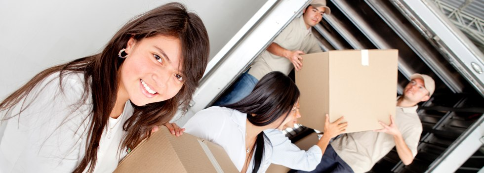 Professional Removalists Aberdare